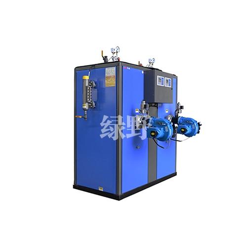 江苏燃气蒸汽发生器