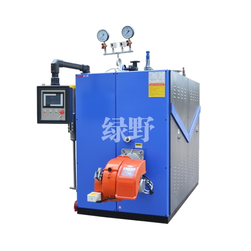 1000KG燃气蒸汽发生器